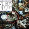 IC-290の調査Ⅵ