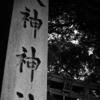 モノクロで見る三輪明神 大神神社