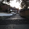 2016年末に奈良を旅した日記2