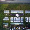 Wimbledon ウィンブルドン