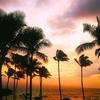 ハワイ挙式と新婚旅行!1人当たりの旅費は8泊11日で12万円、挙式代金は30万円!