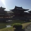 京都一周トレイル 新章 1のオマケ 春の宇治散策の巻
