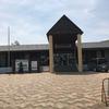 若洲海浜公園 釣果 2017年6月26日