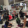 北京から羽田空港へ無事到着、からのヤギさん
