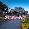 【江の島サムエル・コッキング苑】アイスチューリップを撮ってきました!