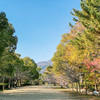 会下山公園を淀川長治さんが紹介したら