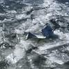 F16戦闘機が小川原湖に補助燃料タンクを投棄!200m離れた地点にはシジミ漁をする漁船がいた!