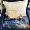 【搭乗記】ANA ビジネスクラス 機内食②(NH9 JFK-NRT)ニューヨーク-成田便