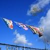 捕鯨の町で行われる和田祭礼。漁船の必需品の大漁旗の由来について簡単に解説します。
