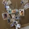 【結婚式DIY】フォトツリー