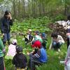毎月恒例「森のお遊び会」