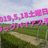 2019,5,18土曜日 トラックバイアス予想 (東京競馬場、京都競馬場、新潟競馬場)