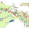 「相模原市さくらマップ」あります ☞ 英語版、中国語版
