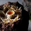 イタリア料理店CASAの「ホームページ」が本格オープンしました。