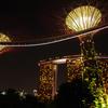 【植物園】入場料無料で充分楽しめるシンガポールの「ガーデンズ・バイ・ザ・ベイ」
