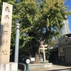 墨田区一の大銀杏 飛木稲荷神社