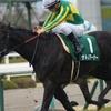 【今週の注目】世代の頂点を目指す日本ダービー&目黒記念の気になるあの馬など
