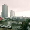 久々の雨。こうしてタイも季節がめぐる