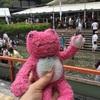 【京都】下鴨神社のみたらし祭りにまたもや行ってみた【ぶらり旅】