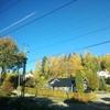 秋晴れのMonへ!