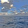 少し荒天時のボート遊びはコレが一番👆 【  湾口パターン / 日本海フィッシング  】