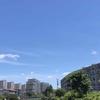 暑い夏がやってきた!!