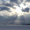雪原で光が遊んでいます