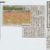 神原町花の会(花美原会)( 339 )  ホビ-花盛り  花摘みできます