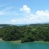 沖縄は海だけじゃない!冬の沖縄でやりたいことを考えてみた