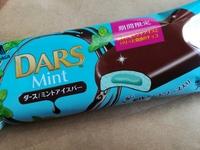 ダース「ミントアイスバー」のレビュー。チョコが美味しいとチョコミント初心者でも食べやすい。