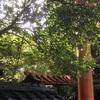 『オドル タカラバコ 』in 京都