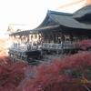 京都・東山山麓の紅葉