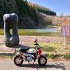 八幡林池(長野県千曲)