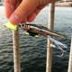 【初心者向け】投げて沈めて巻くだけで釣れる!進化系引き釣りテンヤ「太刀魚ゲッター」コンプリートガイド