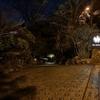 【宿泊記】バーホテル barhotel 箱根香山に泊まった。アリだけど人を選ぶかも?
