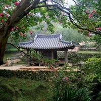 韓国語の謙譲語を理解して正しい言葉遣いを身に付けよう!