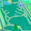 【現在の世田谷公園の様子】ミズゴロウの巣