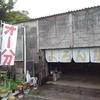 屋久島ラーメンの細道 第24回 ジュダイマスターのフォース溢れる麺