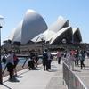シドニーから帰国しました