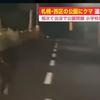 動画映像!北海道札幌市西区宮丘公園「子グマ」出没!逃走中場所はどこ?
