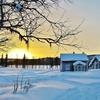 冬の停電に備えて、電気を使わない石油ストーブを用意しないとだ。スノーピークかトヨトミか······レインボーストーブを比較(災害時の暖房)