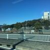 岡田有希子さんのお墓参りへ