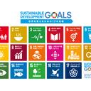 ココロ未来学院、国連SDGs「誰一人置き去りにしないために」