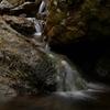 【奥多摩】御岳山・大岳山・御前山 -ロックガーデンとカタクリ、写真が楽しくなる山登り-