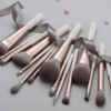 Toxicated Series 15 pcs Gentle Wind Professional Makeup Brush Kit Review
