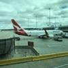 【QF】シンガポール&シドニー旅行(6)〜QF420 MEL→SYD エコノミークラス搭乗記