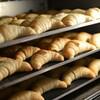 パネトーネ種(パン)の賞味期限が長く日持ちする理由と購入方法。簡単に手に入れれます。