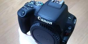 初心者におススメ!Canon Kiss X9一眼レフカメラを購入するに至った理由