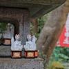 PHOTO LOG*佐助稲荷神社