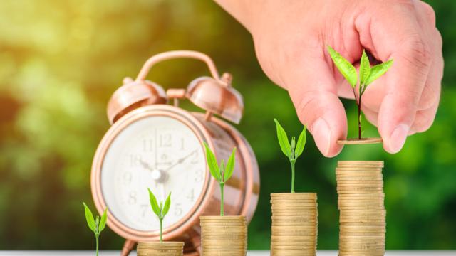 FPが伝授!企業型確定拠出年金(企業型DC)を効果的に活用する方法